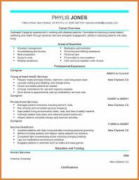 Examples Of The Perfect Resume by Resume Examples Free Resume Examples It Professional Sample