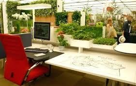desk 1pcs freshening plants beautiful plant seeds office desk