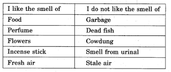 ncert solutions for class 5 evs chapter 1 super senses learn cbse