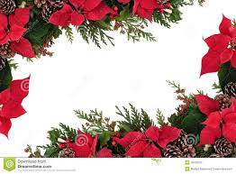 poinsettia floral border stock photo image of winter 26760122