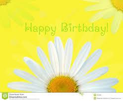 birthday margarita happy birthday card stock illustration image of love flora 184006