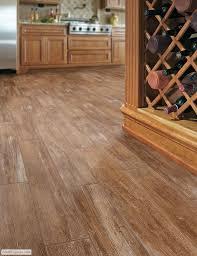 dog and hardwood floors 35 best wood look tile images on pinterest homes flooring ideas