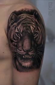 shoulder tiger by mumia best ideas