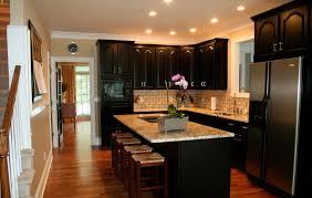 white oak wood nutmeg yardley door kitchen with black cabinets