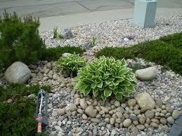 Maintenance Free Garden Ideas Low Maintenance Landscape Ideas For Backyards Backyard Pit