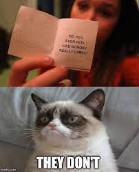 Memes Of Grumpy Cat - grumpy cat meme imgflip