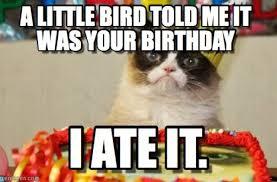 Grumpy Cat Meme Happy Birthday - happy birthday from grumpy cat meme cactus litle pups