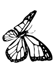 butterfly coloring pages flying butterfly coloring pages hellokids com