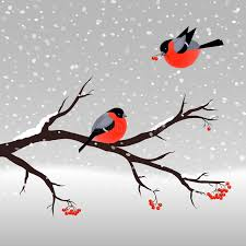 illustration with bullfinches and rowan tree stock