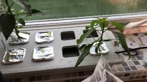 ikea hydroponics kits modifications youtube