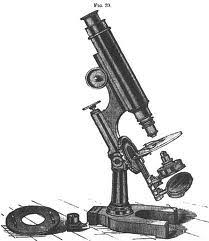 Parts Of A Compound Light Microscope History Of Microscopes