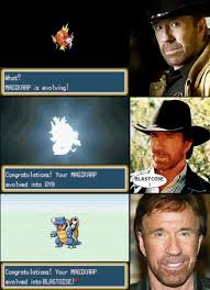 Chuck Norris Pokemon Memes - chuck norris is a pokemon master