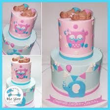 baby shower owls owls and elephants baby shower cake blue sheep bake shop