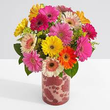 free flowers free flower delivery free shipping on flowers proflowers