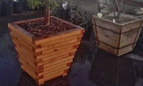 wood planter box gallery bay natives bring nature into your life