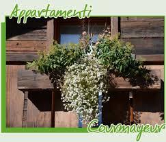 courmayeur appartamenti appartamenti courmayeur affitto appartamenti vacanze courmayeur