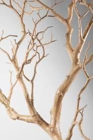 Manzanita Centerpieces Manzanita Branches Sanded Sierra Natural Manzanita 18 26in