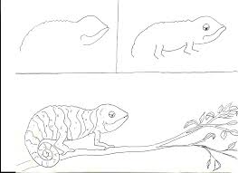 chameleons art class ideas