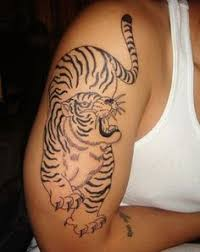 baby tiger tattoo one of my first tattoos i want my fav animal