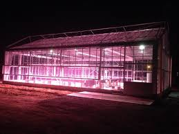 led grow lights valoya led grow lights optimised for plant production and research
