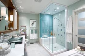 bathroom renovation ideas bathroom renovation ideas from candice bathrooms
