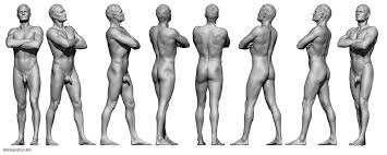 Female Body Reference For 3d Modelling Male Body Reference Anatomy 360