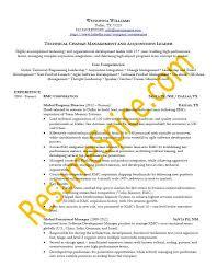 sample resume templates resumespice