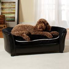 Dog Settee Sofa 71 Best Dog Sofas U0026 Chairs Images On Pinterest