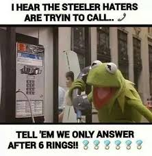 Pittsburgh Steelers Suck Memes - 12 best football images on pinterest steeler nation american