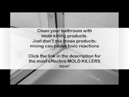 How To Prevent Black Mold In Bathroom How To Get Rid Of Mold In Bathroom Walls Youtube