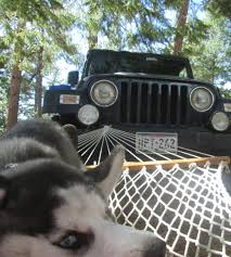 jeep hammock camping jeep hammocks jeep wrangler forum