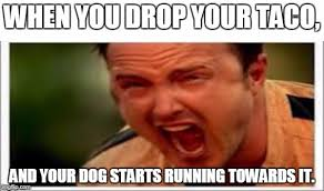 Drop It Meme - when you drop your taco and your dog starts running towards it meme