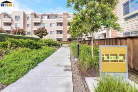 Yosemite Terrace Apartments Chico Ca by Emeryville Ca Condos Townhomes Duets U0026 Patio Homes For Sale