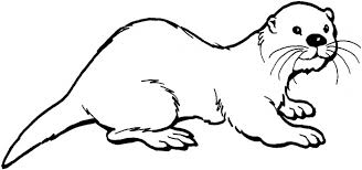 otter coloring page free download