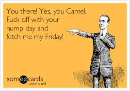 Fuck Yes Meme - you there yes you camel fuck off with your hump day and fetch me