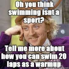 What Are Memes - top 10 swim memes of 2013