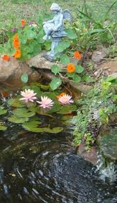 Backyard Pond Pictures by 67 Cool Backyard Pond Design Ideas Digsdigs