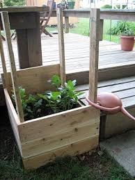 Potato Planter Box by 57 Best Images About Gardening On Pinterest Gardens Planters