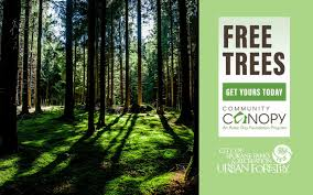 free trees now available from city of spokane urban forestry
