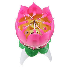 spinning birthday candle buy jr s musical flower rotating birthday candle online at best