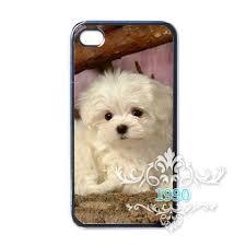 bichon frise iphone 5 case popular dogs bichon frise buy cheap dogs bichon frise lots from
