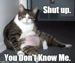 You Don T Know Me Meme - i watch daytime television imgflip