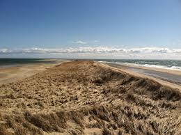marconi beach walk trail massachusetts alltrails com
