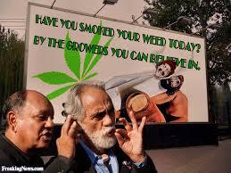 Cheech And Chong Memes - cheech and chong growing marijuana pictures freaking news