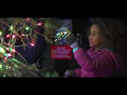 zoo lights stoneham coupons experience the magic of zoolights at stone zoo youtube