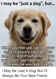 Feeling Sad Meme - i may be just a dog but wwhen you feel sad will be your smile if