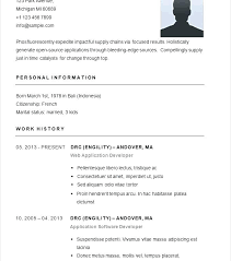 simple curriculum vitae format doc this is simple resume outline homey inspiration simple resume