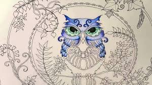 enchanted forest coloring book owl part 1 youtube