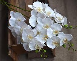 Fake Orchids Real Touch Flowers Etsy