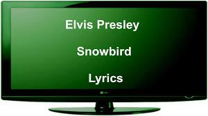 elvis presley snowbird lyrics youtube